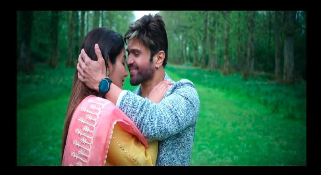 Happy Hardy and Heer Trailer Released
